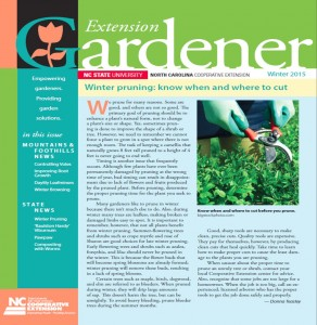 Cover photo for The Winter 2015 Edition of Extension Gardener Is Ready for You!