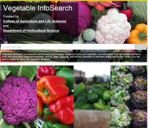 Vegetable-InfoSearch