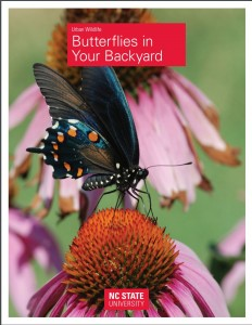 Cover photo for Butterflies in Your Backyard