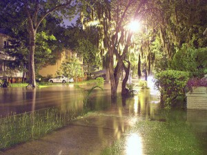 Handling Flooding and Storm Damage in the Landscape | NC State Extension