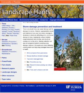 Cover Page of UF Storm Damage Publication