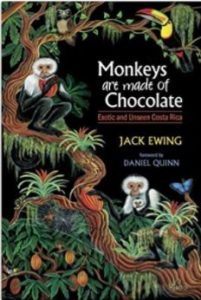 Cover of Monkeys are made of Chocolate