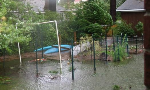 Webinar: Impact of Flood Water on Vegetable Garden Produce