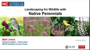 Cover Slide for Native Perennials