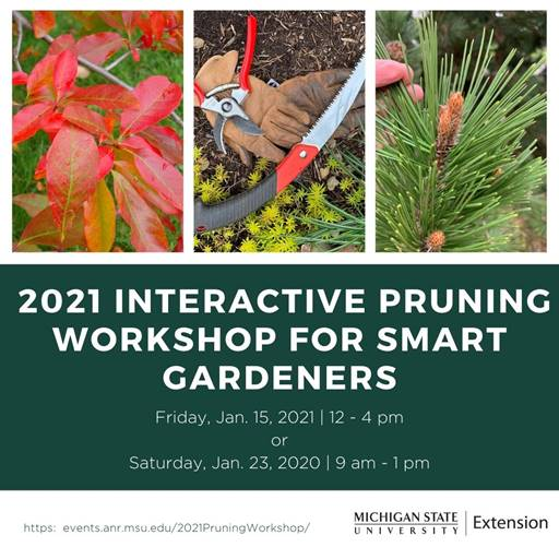 Pruning workshop flyer