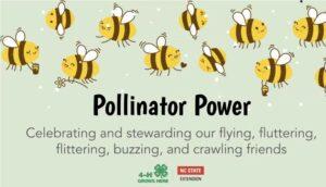 Cover slide for pollinator video